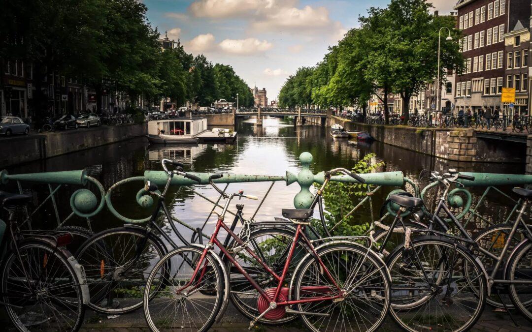 Professionele begeleiding en kunst bij het afscheid van individualistisch symbool 'I Amsterdam'