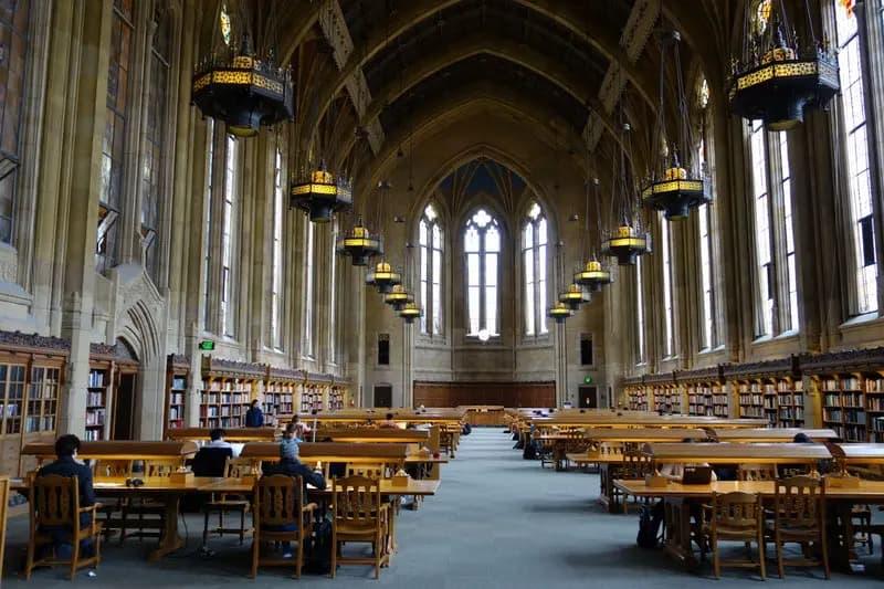 Het is een schande dat Nederlandse universiteiten zich voor het inclusiviteitskarretje laten spannen – zonder oog voor de gevolgen